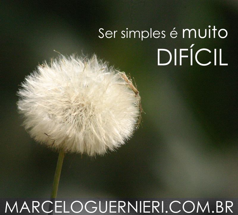Marcelo Guernieri - É difícil ser SIMPLES