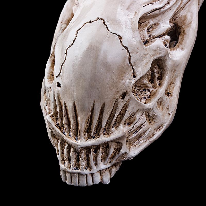 cranio Alien - escultura em resina